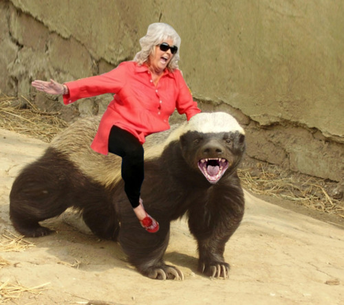 for days after, the honey badger smelled like butter.